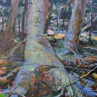 Hiding in the Forest acrylic on canvas 48x36 2010