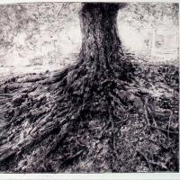 Behind Halliehurst drypoint engraving 2004